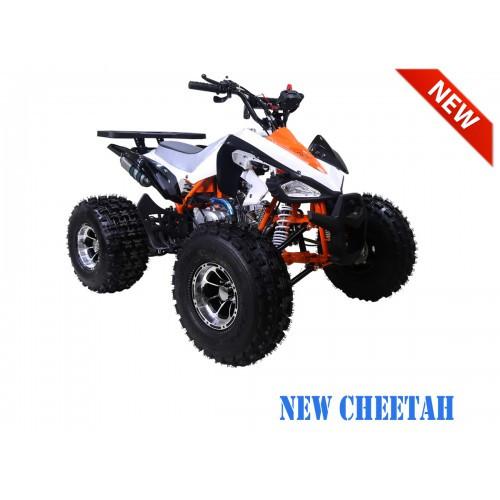 NewCHEETAH OrangeRFS1200.900-500x500.jpg