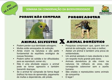 Zoo da o Recado 3.jpg