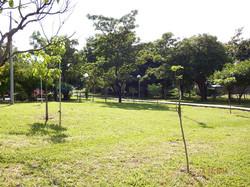 PARQUE DA ZONA LESTE