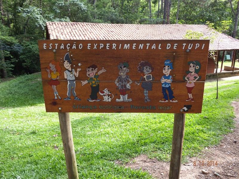 ESTAÇÃO EXPERIMENTAL DE TUPI