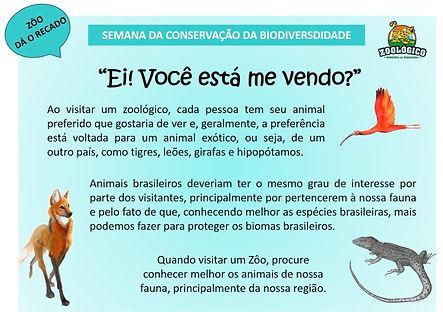 Zoo da o Recado 2.jpg