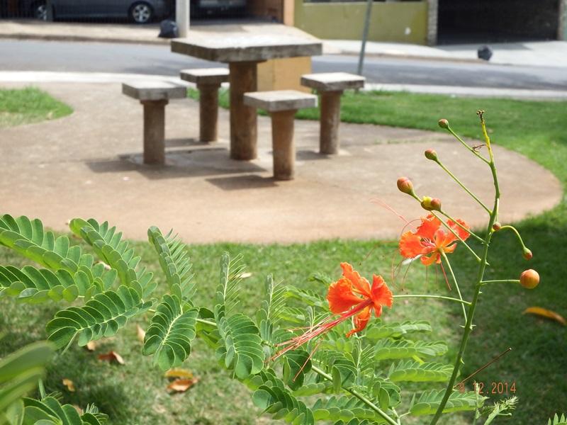 Parque Vila Sônia