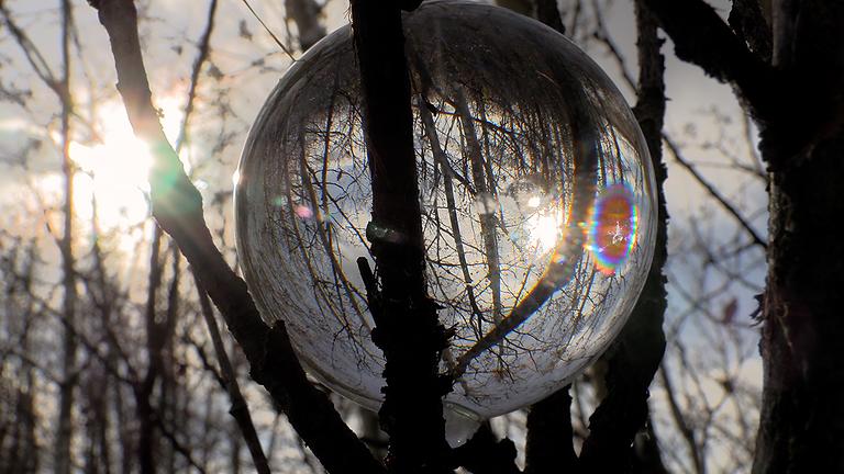 """Film Release """"Die Winterreise"""" (the Winter Journey)"""