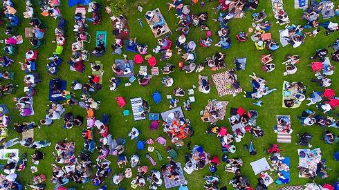aerial-group-picnic.jpg