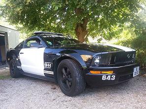 Barricade Mustang