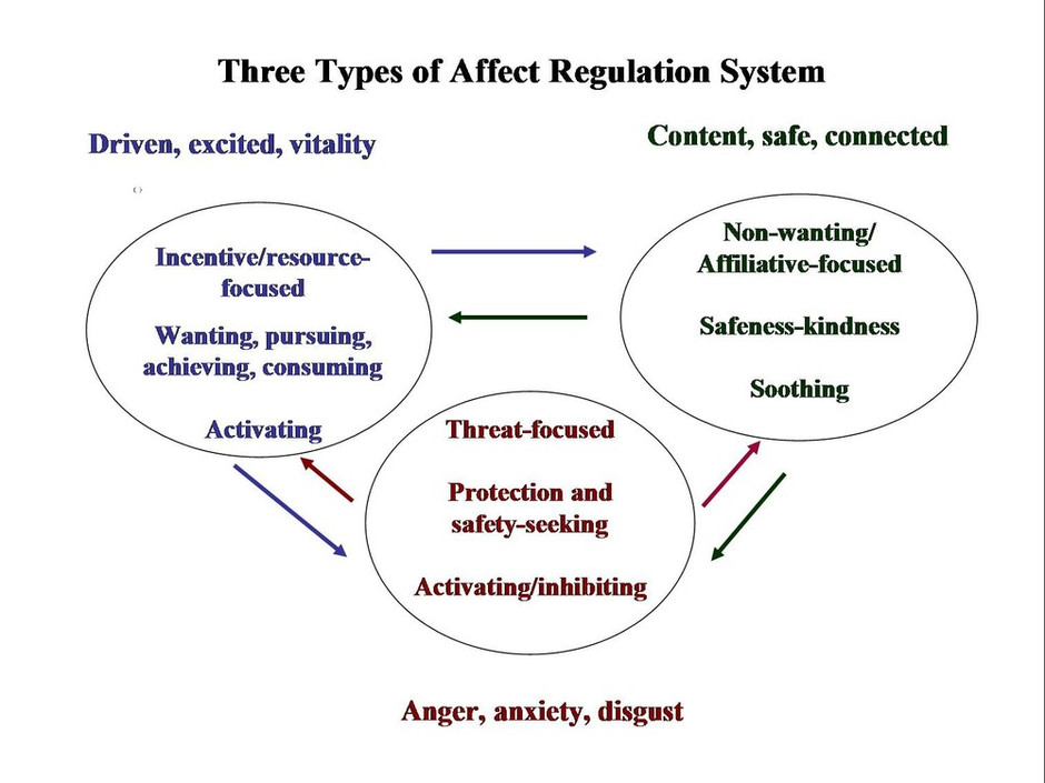 Understanding key emotions, the three systems model.