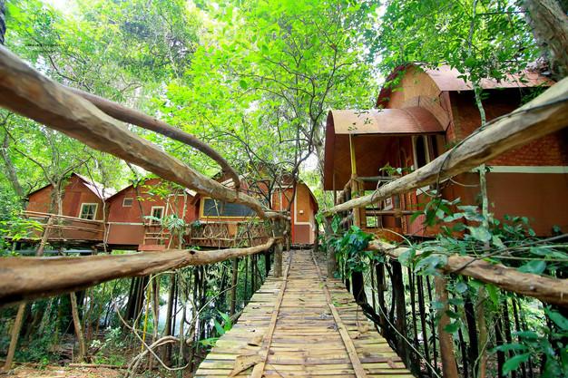 Image result for adavi eco tourism