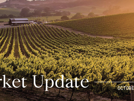 Sonoma Valley Market Update - October 2020