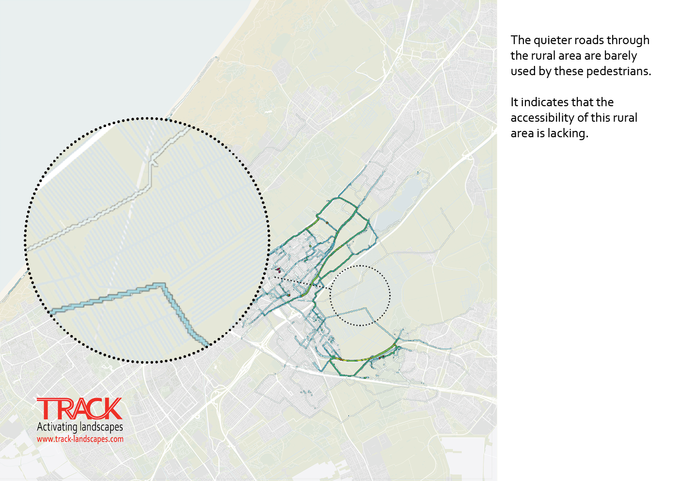The Hague walking behaviour