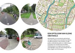 Rotterdam kralingse bos hardlopen11