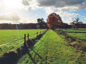 recreatie en natuur_looproute landelijke gebied vallei_.jpg
