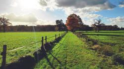 recreatie en natuur_looproute landelijke gebied vallei_