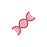 DNA red copy.png