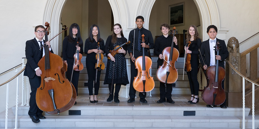(Canceled) Chamber Players Benefit Concert