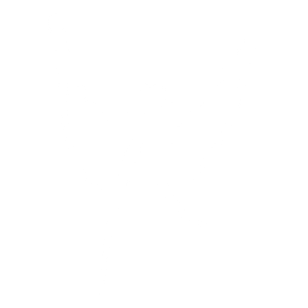 Angel Logo White.png