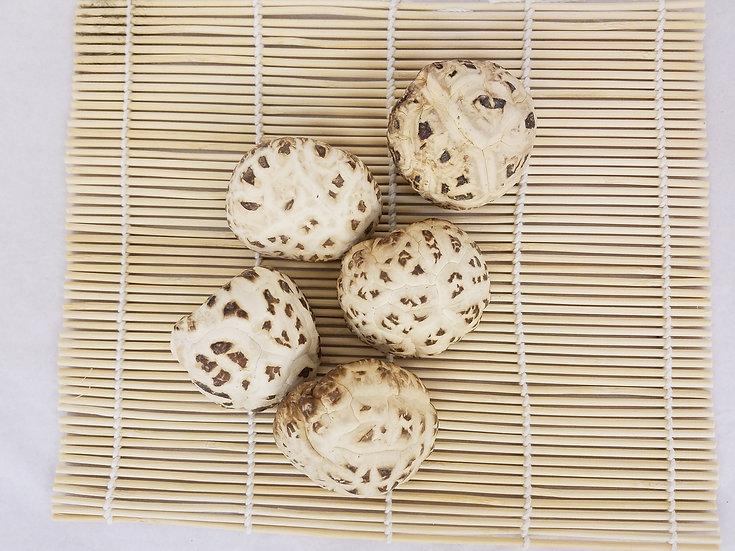 天白花菇 Dried Mushroom 3-4CM