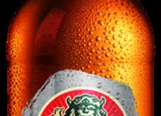 Radegast Rázná 10, sv. výč. pivo 0,5l láhev