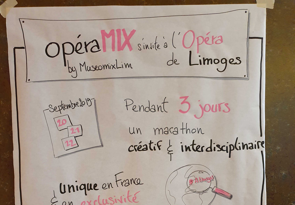 Facilitation graphique - MuseomixLim