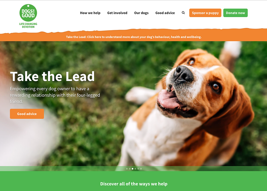 dogs for good homepage image