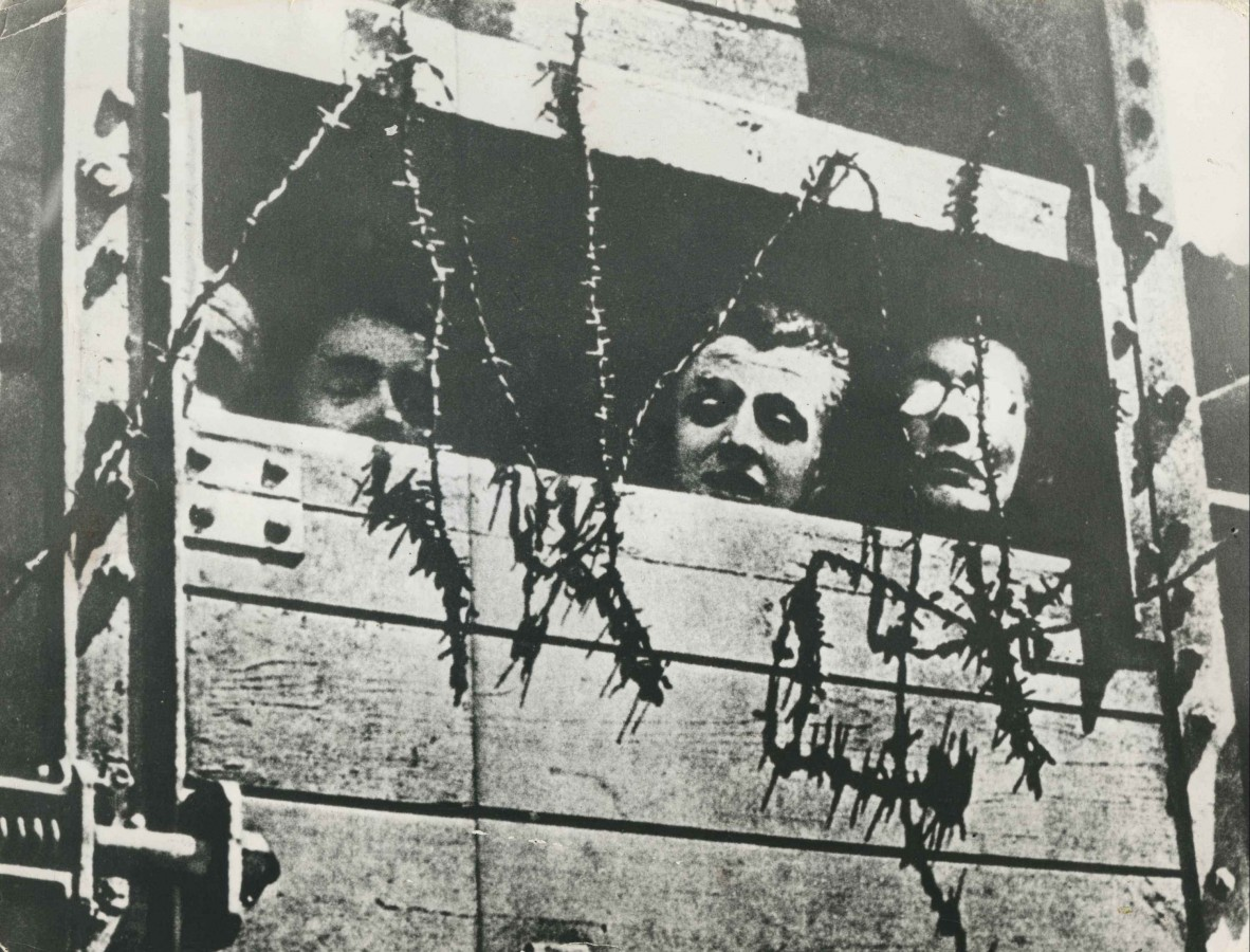 Holocaust victims on train