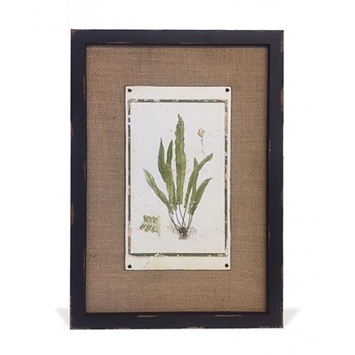 Botanical Print - Style #3