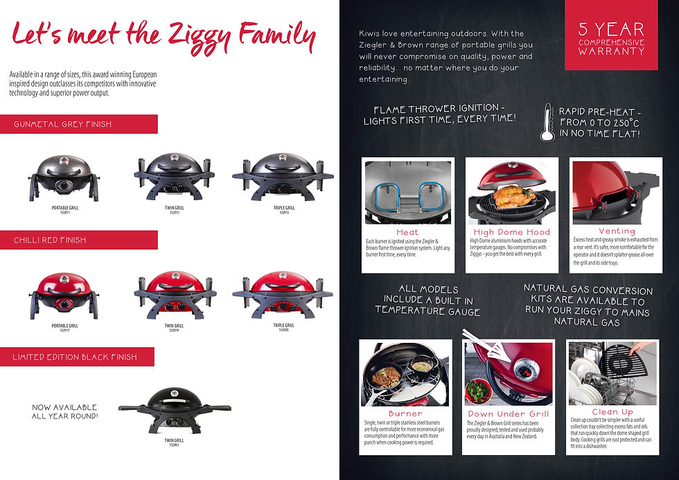 Ziggy family.jpg