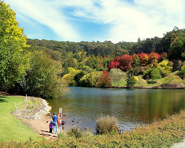 Mt_Lofty_Botanic_Garden_Lake.jpg
