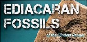 ediacran fossils.JPG