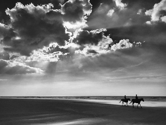 Photographie d'art I Photo d'art I Tableau photo I Tableau art I Horses on the beach I Frédéric Ducos I Artiste photographe