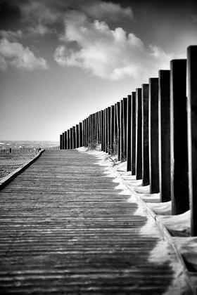 Photographie d'art I Noir et blanc I Paysages I Nature I Océan I Mer I Carcans plage I Frédéric Ducos I Artiste photographe