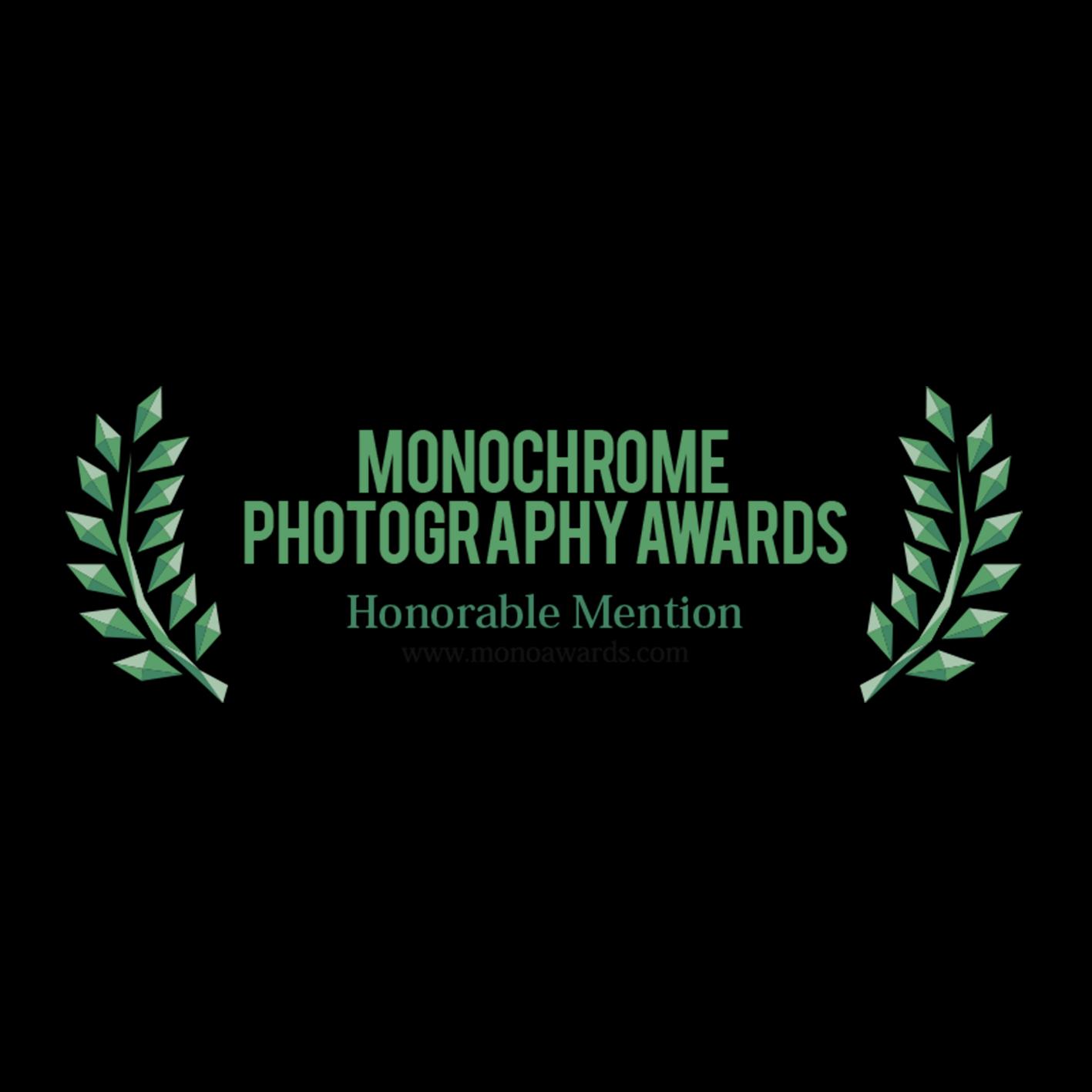 Monochrome photography awards