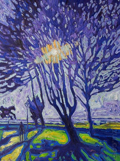 In the shade of Harderwijk,  Original Artwork (oil on canvas, 50cm x 38cm)