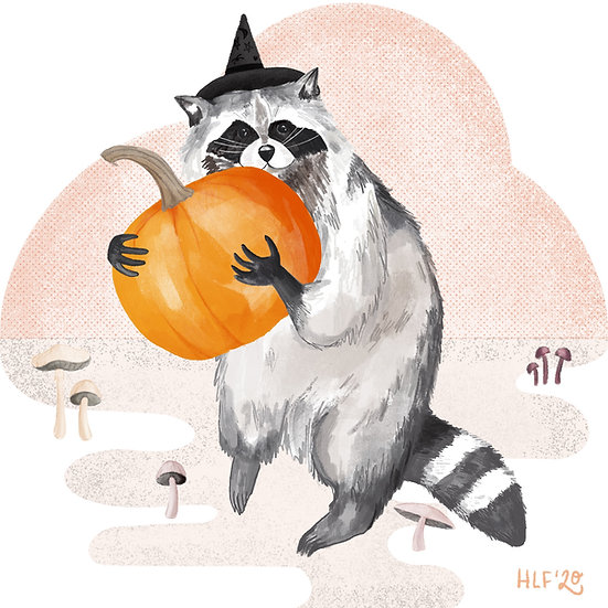 Raccoon Witch