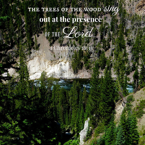 The Trees of the Wood Sing
