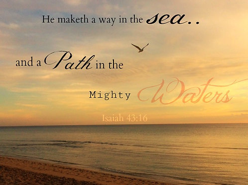 He Makes A Way In The Sea