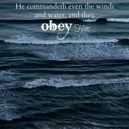 The Waves and Wind Obey Him