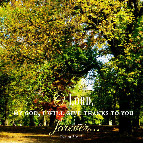 I Give Thanks To You