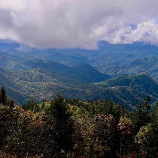 Enjoy this journey through the charming and quaint town of Lexington, Virignia and take in the splendor and majesty of the the mountains in Pisgah National Forest.