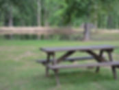 Fishing pond with table.jpg