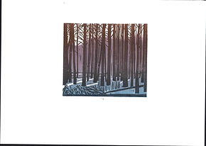 лес 2019.JPG