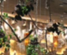 Arbol Restaurant, Dinner Manuel Antonio