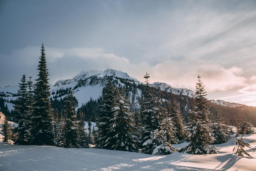 Whistler Blackcomb Ski Season