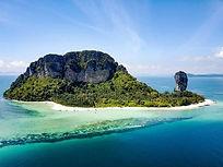 ISLAND CHICKEN ALOE NATURAL POOL VILLA RESORT KRABI AO NANG