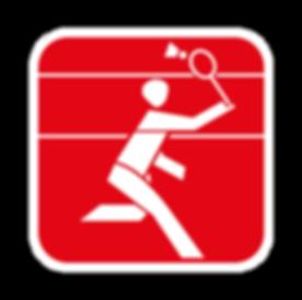 Badminton_3.png
