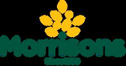 Morrisons_logo_logotype