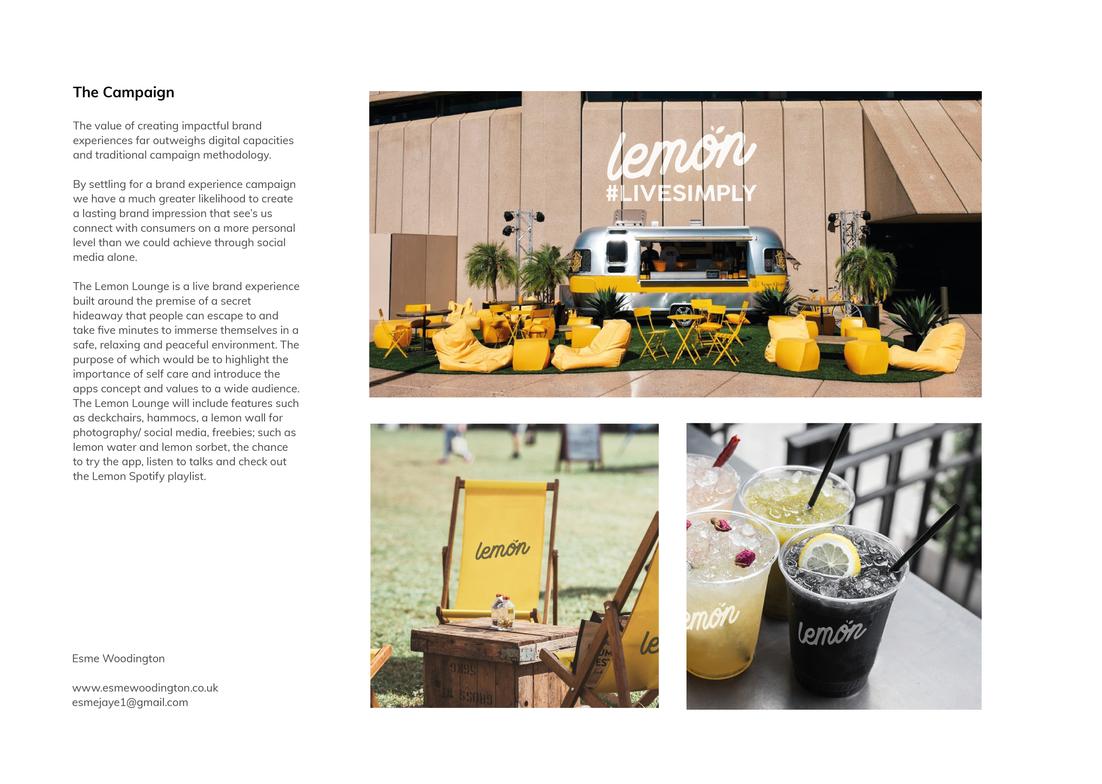 Lemon Portfolio boards-02.png