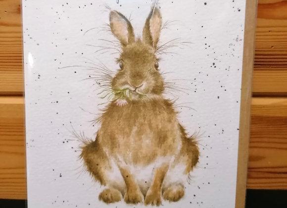 Wenskaart - konijn