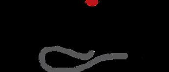 qblitz logo.png
