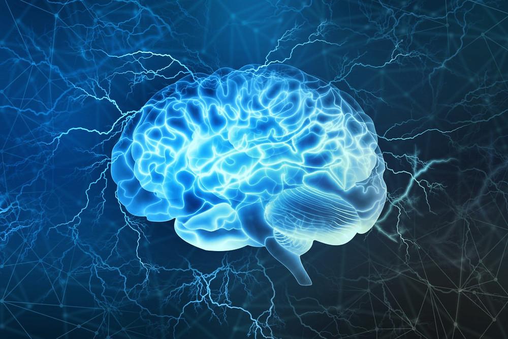 Alzheimer's brain.  Part of the Qwiz5 series by Qwiz Quizbowl Camp, written to help quiz bowl teams power more tossups!