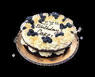 torta cioccolato, crema cheesecake e mirtilli, naked